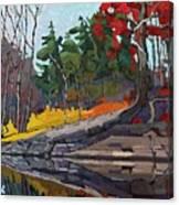 Singleton Autumn Canvas Print