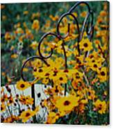 Sit In Feilds Of Gold Canvas Print