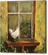 Sittin Chickens Canvas Print