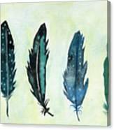 Six Feathers Canvas Print