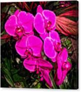 Six Flowers Canvas Print