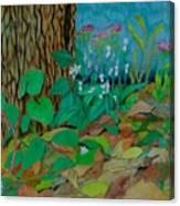 Six in hiding Canvas Print