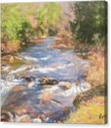 Six Mile Run Premier Trout Stream. Canvas Print