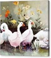 Six Quackers Canvas Print