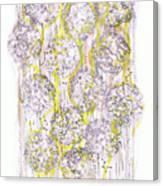 Size Exclusion Chromatography Canvas Print