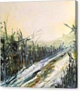 Ski Trail Canvas Print