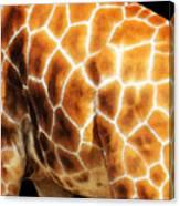 Skin Deep - Buy Giraffe Art Prints Canvas Print