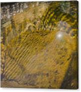 Skin River Canvas Print