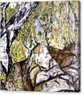 Skryta Identita Canvas Print