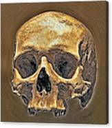 Skull. Canvas Print