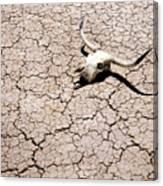Skull In Desert 2 Canvas Print