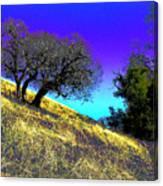 Sky Burning Blue Canvas Print