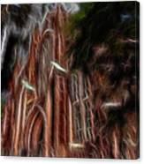 Sky Spirits 2 Canvas Print