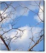 Look At The Blue Sky Canvas Print