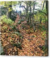 Skylands Path P Canvas Print