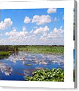Skyscape Reflections Blue Cypress Marsh Florida Collage 1 Canvas Print
