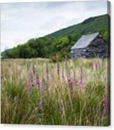 Slate Cabin In Wales Canvas Print