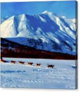 Sledding In Russia Canvas Print