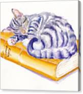Sleeping Beauty Canvas Print