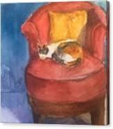 Sleeping Calico Canvas Print