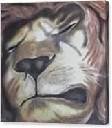Sleeping King Canvas Print