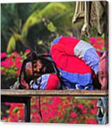 Sleeping Rasta-st Lucia Canvas Print