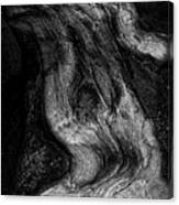 Sleeping Rocks Canvas Print
