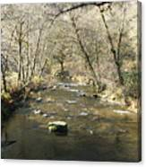 Sleepy Creek Canvas Print