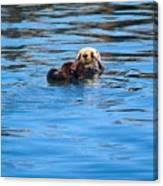Sleepy Otter Canvas Print