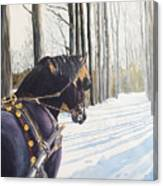Sleigh Bells Canvas Print