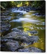 Sliver Creek Canvas Print