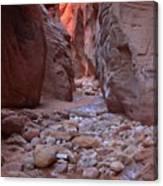 Slot Canyon Reflections Canvas Print