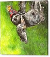 Sloth Birthday Party Canvas Print