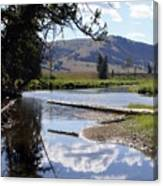 Slough Creek 1 Canvas Print