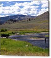 Slough Creek Angler Canvas Print
