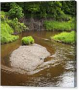 Slow River In Deep Forest Landscape Canvas Print