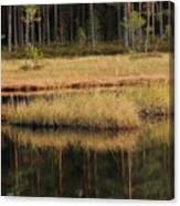 Small Forest Lake In Autumn Canvas Print