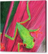 Small Frog Canvas Print
