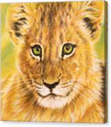 Small Lion Canvas Print