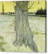Small Pear Tree In Blossom Arles, April 1888 Vincent Van Gogh 1853  1890 Canvas Print