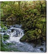 Small River Cascade Over Mossy Rocks In Northern Wales Canvas Print