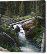 Small Stream In The Lost Wilderness 070810-1612 Canvas Print