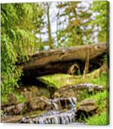 Small Waterfall 2 Canvas Print