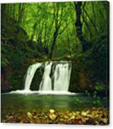 Small Waterfall In Forest Canvas Print