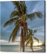 Smathers Beach Coconut Sunset Canvas Print