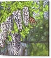 Smell The Moutain Laurel Canvas Print