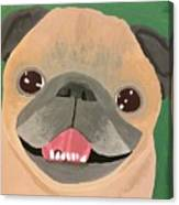 Smiling Senior Pug Canvas Print