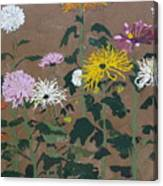 Smith's Giant Chrysanthemums Canvas Print