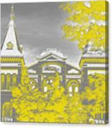 Smithsonian Chrome Canvas Print
