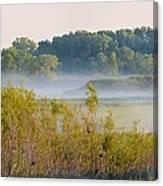 Smokey Marshland Canvas Print
